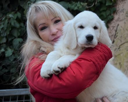 Elevage Pension Canine Du Crepuscule Des Etangs Lorraine